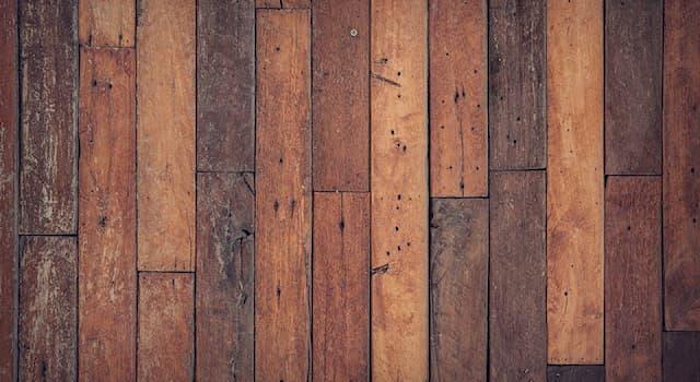 Общество Вопрос: Как называется данный вид деревянного покрытия?