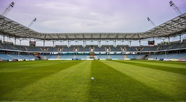 Спорт Вопрос: Как называется турецкий профессиональный футбольный клуб из города Стамбула?