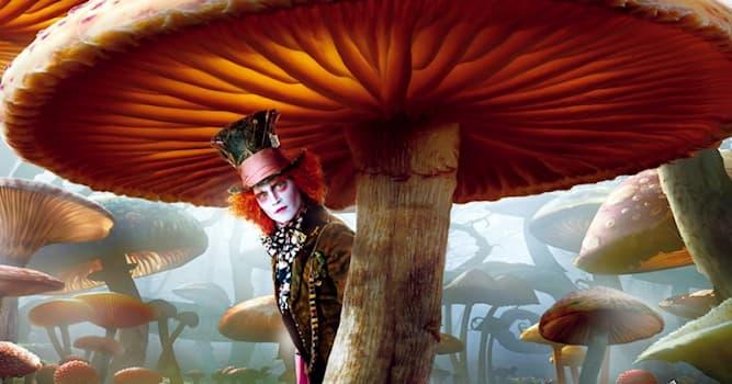 Природа Вопрос: Какой гриб весит 10-25 килограмм и используется для лечения онкологии?