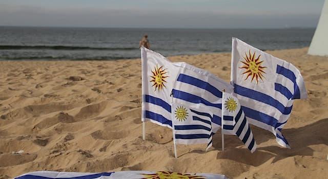 Общество Вопрос: Какой язык является официальным в Уругвае?