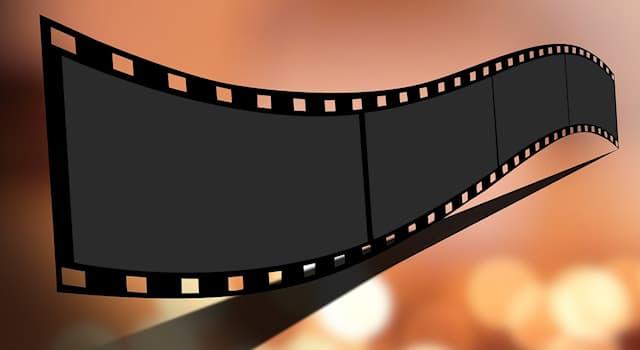 Кино Вопрос: Почему писательница Энн Райс была против экранизации своего романа «Интервью с вампиром»?