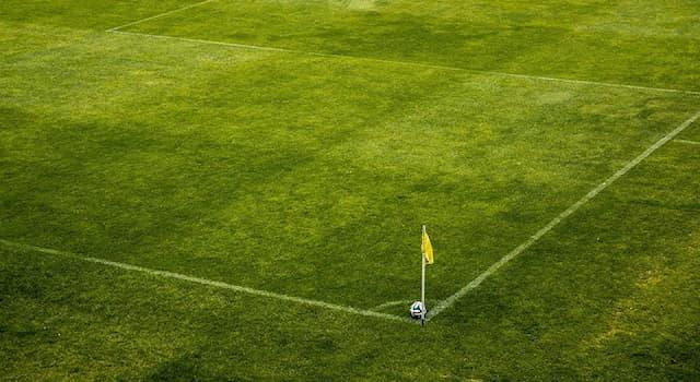"""Спорт Вопрос: В какой стране базируется профессиональный футбольный клуб """"Гранада""""?"""
