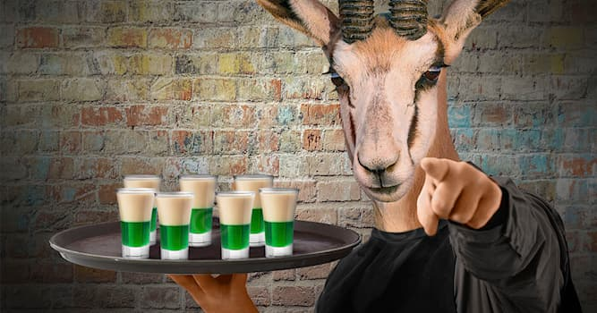 Culture Trivia Question: What is a South African cocktail shot which contains peppermint and Amarula liqueurs called?